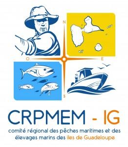 CRPMEM